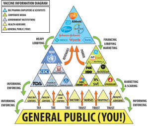 Vaccine Information Diagram - Click to enlarge